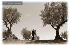 Foto: Hugo Neves Vivemos cada trabalho como único, reinventando a fotografia cada dia que passa na procura do melhor em vos impressionar, divertir, comover, sorrir... Country Roads, Raisin, Wedding Photography, Finding Nemo, Pictures