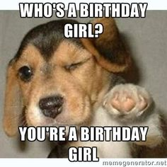 Who's a birthday girl? You're a birthday girl - fist bump puppy ...