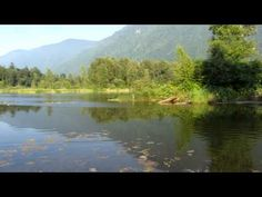 Cheam Lake Wetlands Regional Park in Chilliwack | Vancouver Trails
