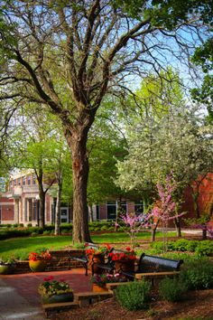 Spring at St. Norbert College
