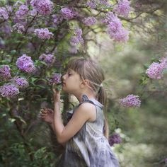 """""""A faint smell of lilac filled the air. There was always lilac in this part of town. Where there were grandmothers, there was always lilac."""