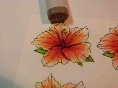 copic coloring
