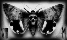 Death moth by Mylesjosh