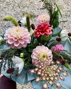 """Snittblomsodlare i Sverige på Instagram: """"Glad Valborg och tusen tack för alla kommentarer och dm's kring mitt senaste inlägg. Väldigt läskigt att dela med sig men så fint när det…"""" Glad, Tack, Floral Wreath, Wreaths, Flowers, Instagram, Decor, Floral Crown, Decoration"""