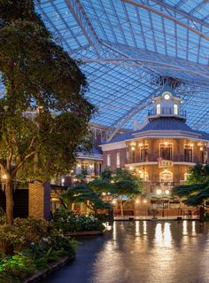 Life is full of reasons to celebrate. From a milestone life event to the day you ran a mile, make any occasion special with Gaylord Opryland's Your Time to Celebrate getaway.