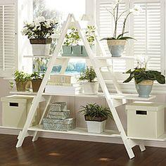 Cool Plant Stand Design Ideas for Indoor Houseplant 15 - Rockindeco Plant Shelves, Wood Shelves, Ladder Shelves, Bookshelf Diy, Plant Window Shelf, Ladder Display, Bookshelf Plans, Repurposed Furniture, Diy Furniture