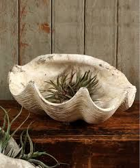 Cement Cast Clam Shell - Antique White