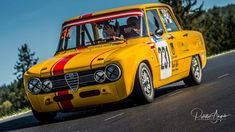 Alfa Cars, Alfa Romeo Giulia, Funny Cars, Car Humor, Formula One, Le Mans, Rally, Cool Cars, Race Cars