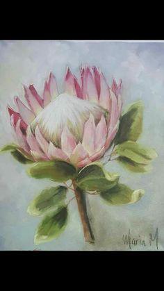 Acrylic Painting Flowers, Watercolor Flowers, Watercolor Art, Protea Art, Protea Flower, Loom Flowers, Blue Flower Wallpaper, Australian Native Flowers, Floral Drawing