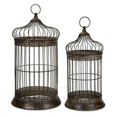 9 Do's and Don'ts When Buying a Used Bird Cage