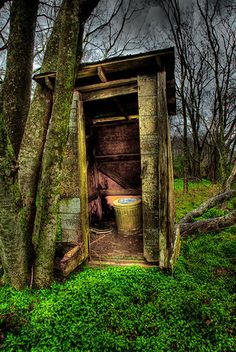 Country Out Back House  green covered forest floor, toilet win outhouses next to a tree