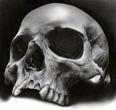 www.leethalbiker.com Skull Tattoo Design, Skull Design, Skull Tattoos, Body Art Tattoos, Airbrush Skull, Real Skull, Skull Reference, Skull Anatomy, Skeleton Drawings