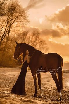 Soft sunset with woman and horse, Romantic Horse photography.