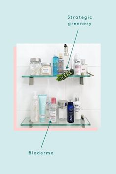 This is the anatomy of the PERFECT shelfie