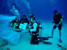 5 locais para celebrar o seu casamento debaixo d'água - Portal iCasei Casamentos