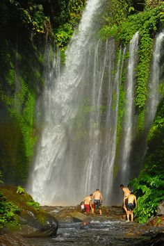 Tiu Kelep Waterfall in Lombok Island, Indonesia