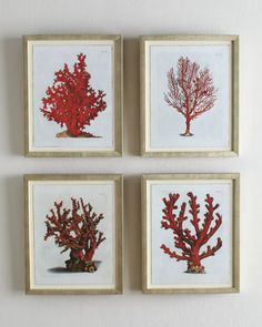 Red Coral Prints at Horchow.  I hung these in a blue bedroom - beautiful.