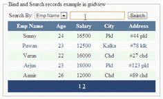 Bind Asp.Net gridview and implement search functionality using Sql Sever CASE WHEN  or NESTED IF-ELSE  http://www.webcodeexpert.com/2013/09/how-to-bind-and-implement-search.html