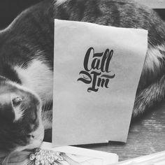 Котик  поддержи эскиз!