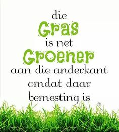 Die gras is groener aan die anderkant van die draad? Wise Quotes, Quotable Quotes, Afrikaans Language, Afrikaanse Quotes, Puns, Slogan, Favorite Quotes, Hilarious, Wisdom