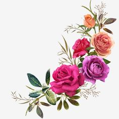 Similar Images, Stock Photos & Vectors of watercolor flowers. floral illustration, Leaf and buds. Botanic composition for wedding or greeting card. branch of flowers - abstraction roses, hydrangea - 1032867733 Bunch Of Flowers, Types Of Flowers, Floral Bouquets, Floral Wreath, Flower Border Clipart, Flower Art Images, Flower Art Drawing, Rose Flower Wallpaper, Beautiful Flowers Wallpapers