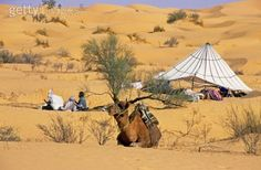 Two distant Berber men, a tent, and a camel in the Sahara Desert, Tunisia by Stephen Sharnoff