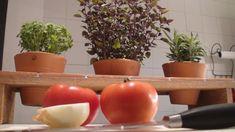 Planter Pots, Link, Home Workshop, Kitchen, Log Projects