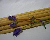 EAR CANDLES NATURAL Beeswax Professional Grade 32 Double
