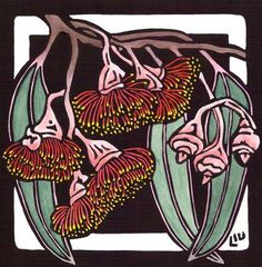 Eucalyptus Caesia - Linocut (hand coloured) by Lynette Weir Australian Wildflowers, Australian Native Flowers, Australian Art, Australian Plants, Margaret Preston, Linocut Artists, Lino Art, Scratchboard Art, Linoprint