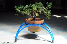 Rejuiced Triangle Planter by Johnnie Olivan