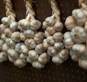 How to Grow and Plant Garlic - Become a Small Scale Garlic Farmer