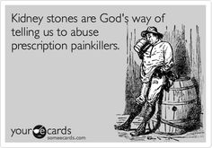 Kidney stones are God's way of telling us to abuse prescription painkillers. Kidney Stone Meme, Kidney Stones Funny, Kidney Stone Relief, Laughed Until We Cried, Stone Quotes, You Make Me Laugh, Kidney Health, Pet Peeves, Funny Picture Quotes