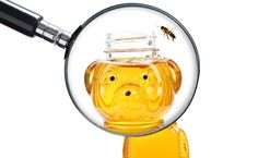 There is less local honey from year to year, thanks to climate change, which in no way is favorable to