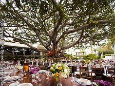 Fairmont Miramar Hotel and Bungalows Santa Monica Beach Wedding Venues 90401