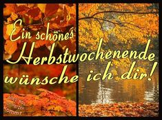 Weekend Greetings, Daily Quotes, Good Night, Movie Posters, Germany, Collage, Fall, Fall Quotes, Collages