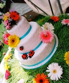I like the base of this cake with the white frosting and blue ribbon