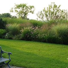 Garden Grassy borders create rooms Preschool Arts And Crafts: Sea Horse Themes And Ideas If you are Front Garden Landscape, Garden Types, Meadow Garden, Ornamental Grasses, Landscape, Grasses Landscaping, Rock Garden Landscaping, Outdoor Plants, Backyard