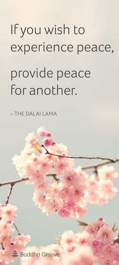 """If you wish to experience peace, provide peace for another."" -The Dalai Lama"