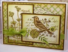 SC386 Bird & Asperula by BeckyTE - Cards and Paper Crafts at Splitcoaststampers