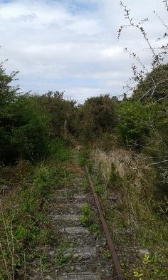 When we first started clearing the rail lines on the Taneatua line, this is how they looked. Clearing the lines in degrees was hard going Self Driving, 30 Degrees, New Zealand, Trains, Country Roads, Earth, Explore, Adventure, Beautiful