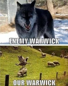 Our warwick trolls