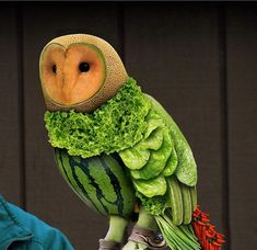 Owl-fully good! What a creative idea! This owl is all green fruit and vegetables. Some folks get so creative with these kind of things it's amazing. Making animals from food. This was beautifully put together.