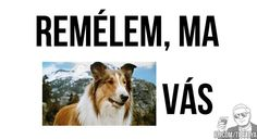 Ezért is imádom a magyarnyelvet! Funny Memes, Jokes, Funny Cute, Good Day, Puns, I Laughed, Haha, Motivational Quotes, Funny Pictures
