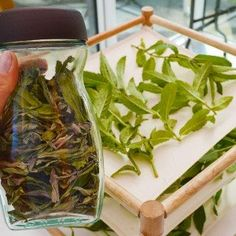 Learn to make cold process peppermint soap scented with essential oil and colored with a green mineral and flecks of real peppermint leaves Peppermint Soap, Peppermint Leaves, Green Tomato Chutney Recipe, Drying Mint Leaves, Growing Sweet Peas, Green Soap, Flower Patch, Soap Recipes, Soap Making