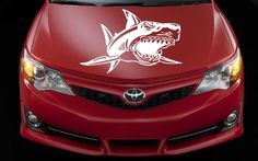 Auto Car Vinyl Decal Angry Shark for Hood Art Decor Removable Stylish Sticker Unique Design Any Vehicle Decal House http://www.amazon.com/dp/B00D85JGUO/ref=cm_sw_r_pi_dp_KCVTtb0JMWBFA8HQ