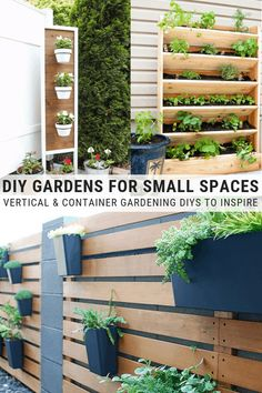 This post shares vertical and container gardening ideas, specifically DIY gardens for small spaces including patios, small backyards, decks, and more. Read Full Article Here by Knockoffdecor Garden Planters, Garden Art, Garden Design, Succulent Planters, Terrace Garden, Succulents Garden, Container Gardening Vegetables, Vegetable Garden, Garden Container