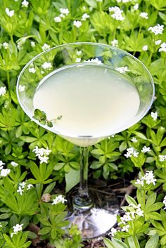 The Ginger Bee...with lavender, honey, ginger liqueur and lemonade,