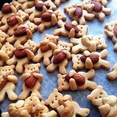 """Bärenkekse - fast zu niedlich zum Essen - """"Die Bärenkekse einer japanischen Köchin verzaubern die Welt: Die kleinen Teddybären, die Mandeln umarmen, sind beinah zu niedlich, um aufgegessen zu werden."""""""
