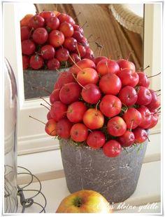rode appeltjes Down On The Farm, Diy Flowers, Xmas, Christmas, Flower Arrangements, Autumn, Rose, Apple Pies, Green