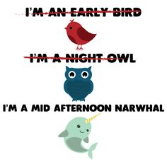Don't be bird, or an owl, be a Narwhal